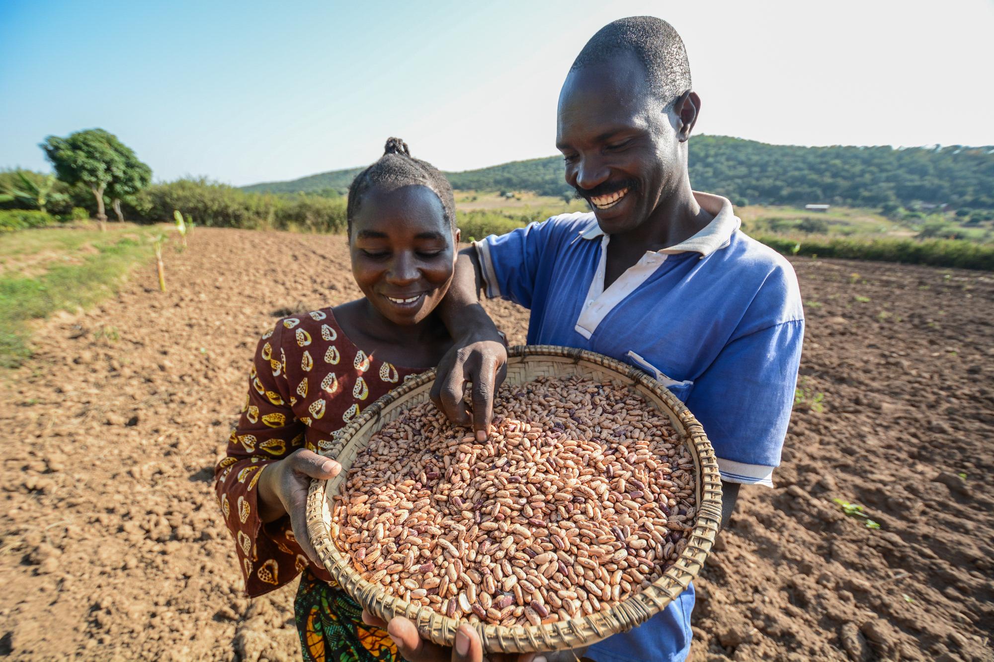 Semences et agriculture familiale