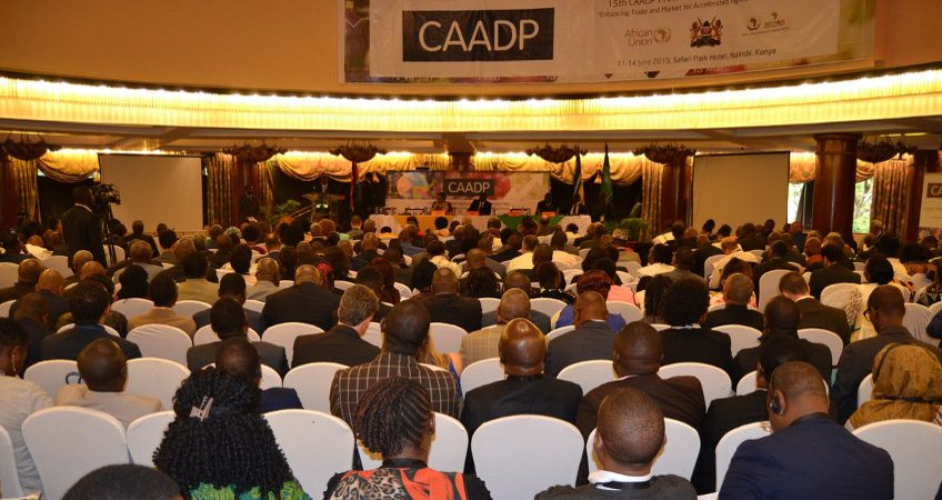 15th CAADP Partnership Platform Meeting